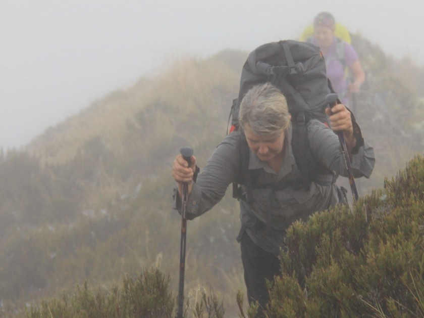 Hiking through the mist on the Brewster Track, Mount Aspiring National Park, New Zealand