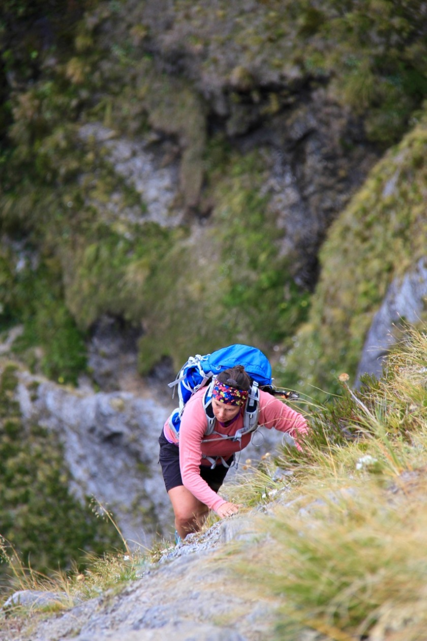 A hiker climbs the steep slopes of the Cascade Saddle Track in Mount Aspiring National Park