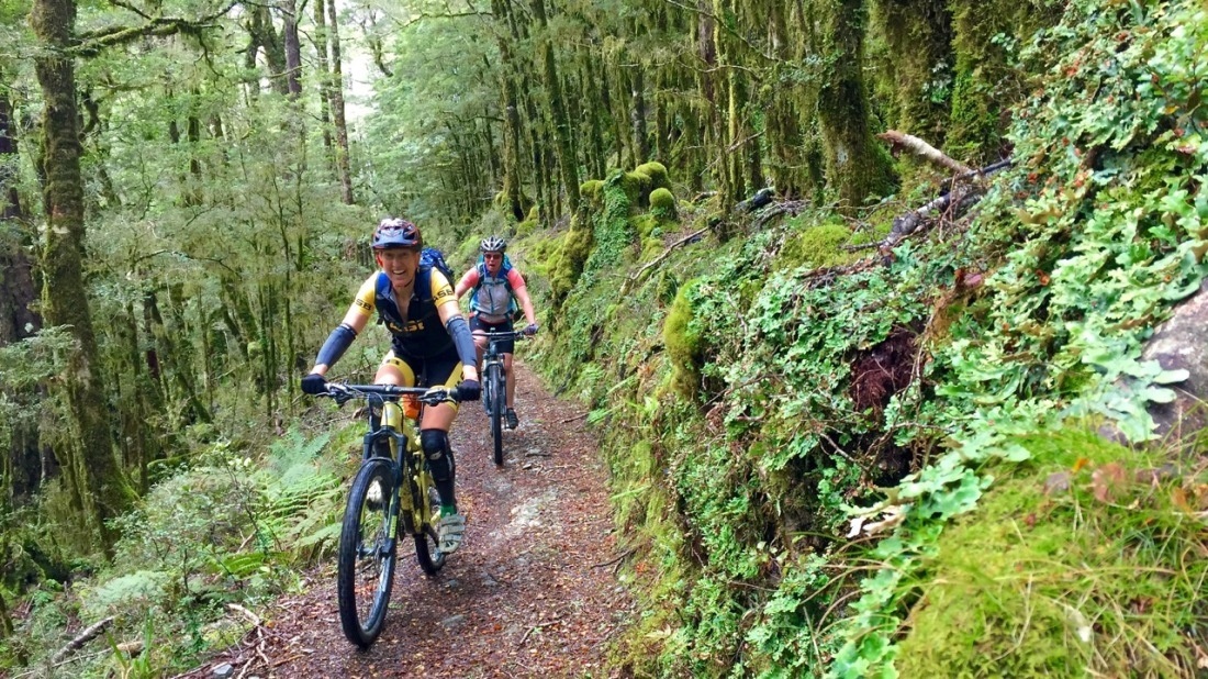 Mountain bikers ride through rainforest on the Old Ghost Road, West Coast NZ