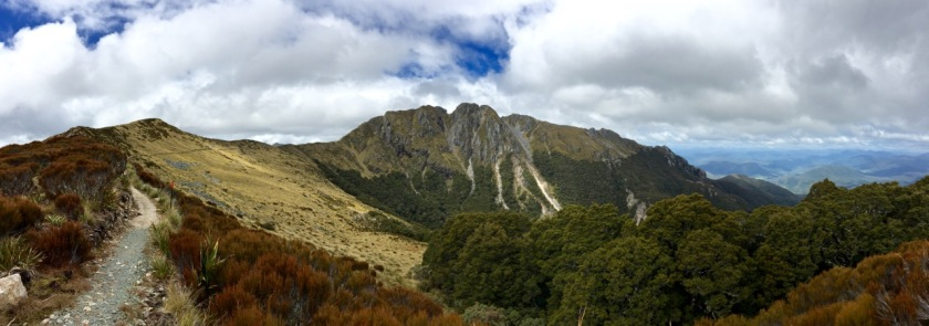 Panorama of the Old Ghost Road, West Coast NZ