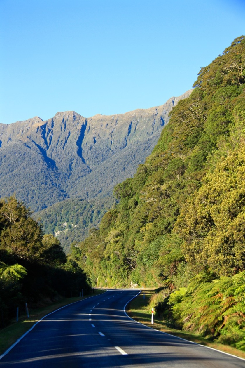 Haast Pass Highway Mt Aspiring National Park
