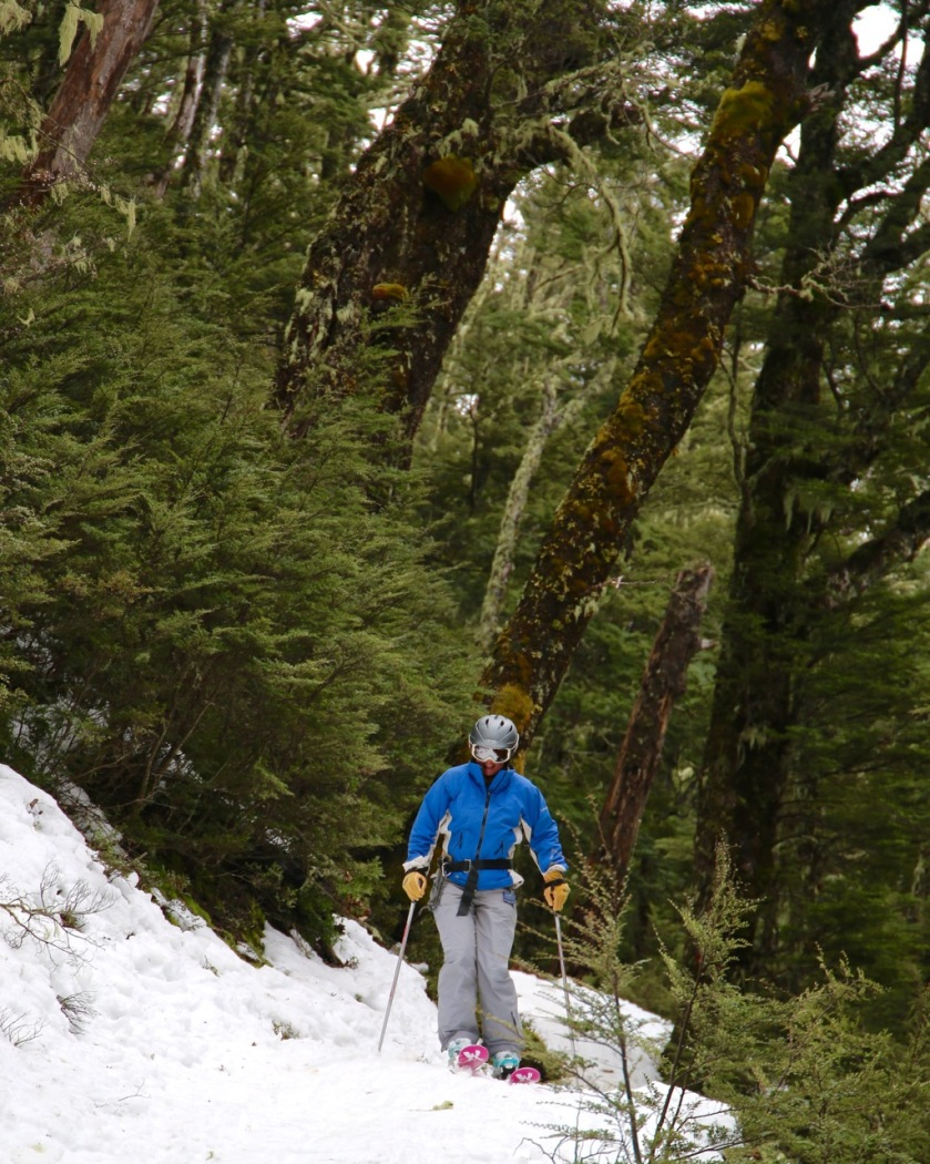 Skier on a forest track, Craigieburn, New Zealand