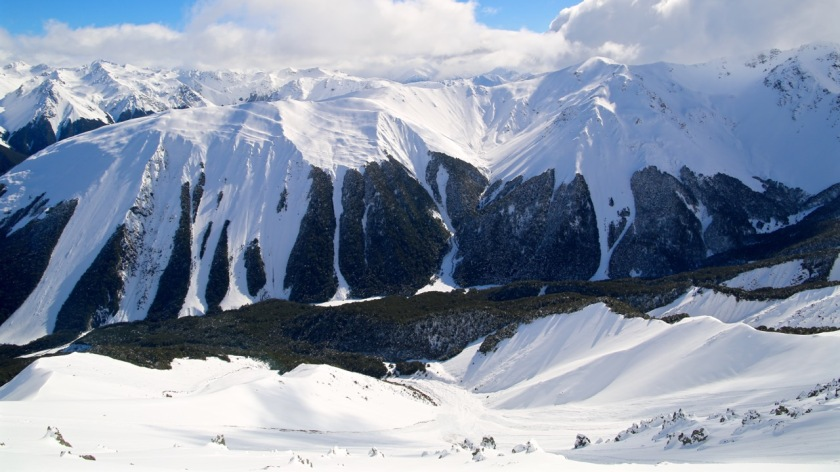 Avalanche chutes cut a swathe through the native beech forest flanking the Craigieburn Range. Canterbury, New Zealand