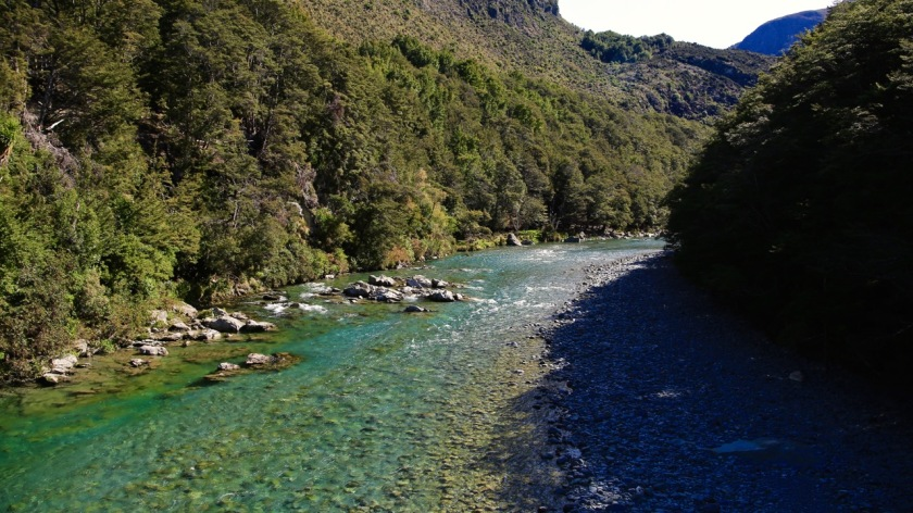 Greenstone River, Mount Aspiring National Park, New Zealand