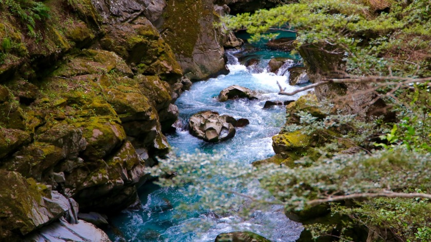 Caples River, Mount Aspiring National Park, New Zealand