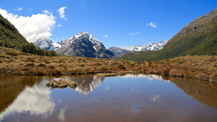 Reflections in an alpine tarn at McKellar Saddle, Greenstone - Caples Track, Mount Aspiring National Park, New Zealand
