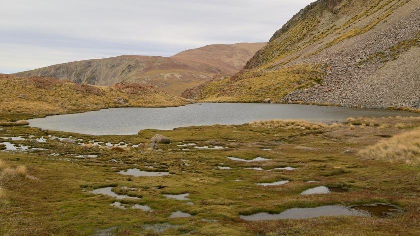 Alpine tarn and wetland near Lake Ohau New Zealand
