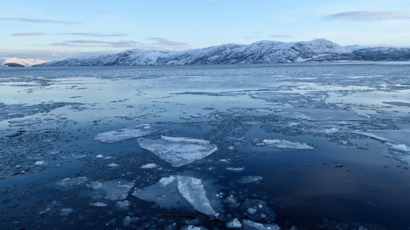 Sea ice in Altafjorden, Alta, Northern Norway