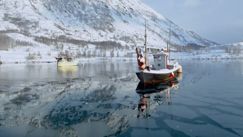 Fishing boats in Bergsfjord, Northern Norway