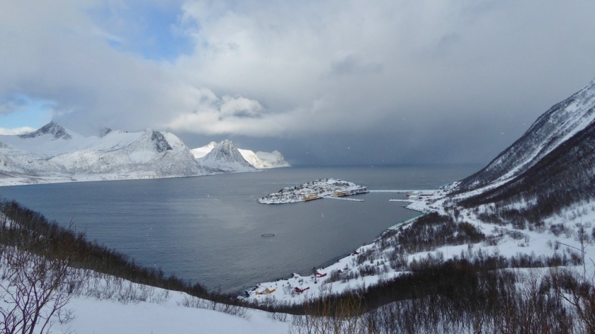 The island of Husoy, Northern Norway