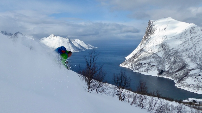 Skiing in Northern Norway on a powder day