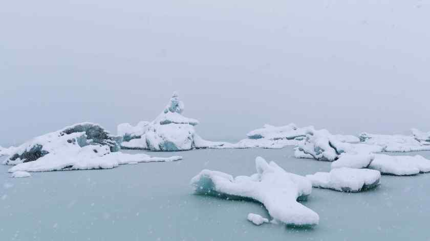 Icebergs covered in fresh snow on the Tasman Glacier Lake, Mt Cook, New Zealand
